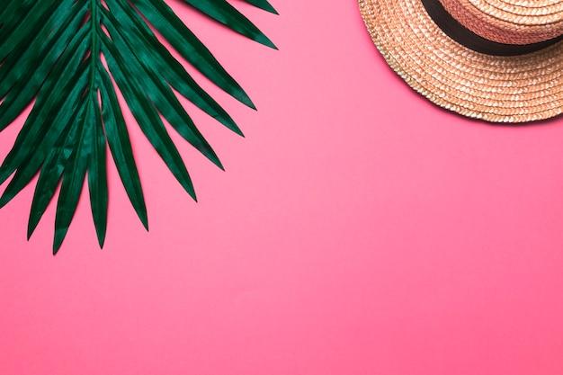 Composición de sombrero beige y hoja de planta.