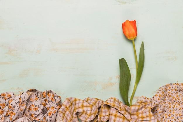 Composición de tulipán y chales.