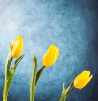 Composición de tulipanes colocados en el escritorio azul