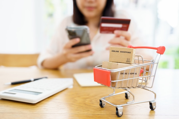 Compras en línea con carrito de compras y servicio de entrega de bolsas de compras.