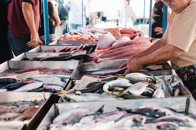 De compras en el mercado de pescado
