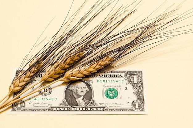 Concepto de agricultura. espigas de trigo en un billete de un dólar estadounidense de cerca.
