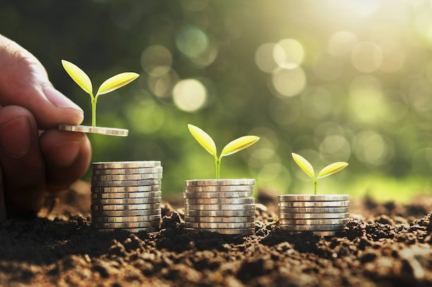 Concepto de ahorro y crecimiento del dinero.
