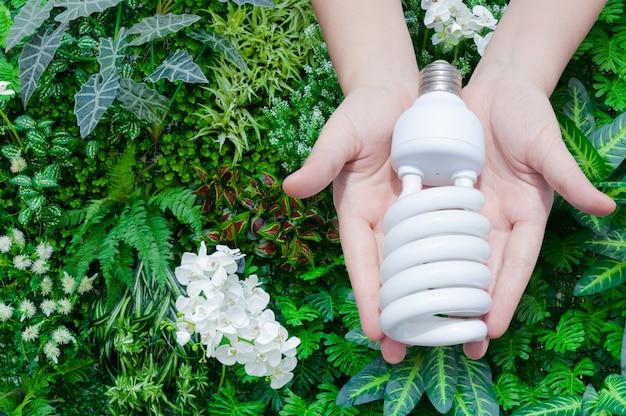 Concepto de ahorro de energía, mano de mujer con bombilla en naturaleza verde