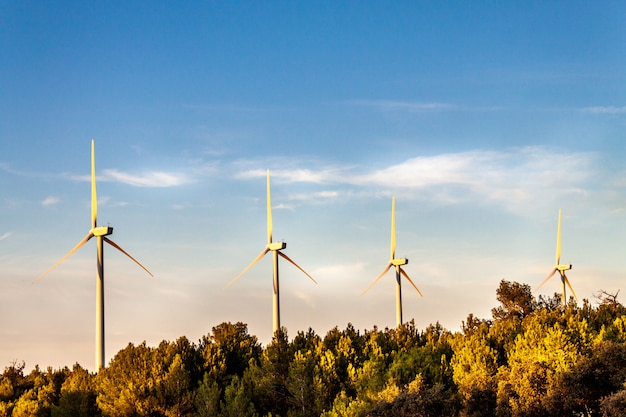 Concepto de ahorro de energía con vista panorámica desde la estación de aerogeneradores con fondo de cielo azul de belleza