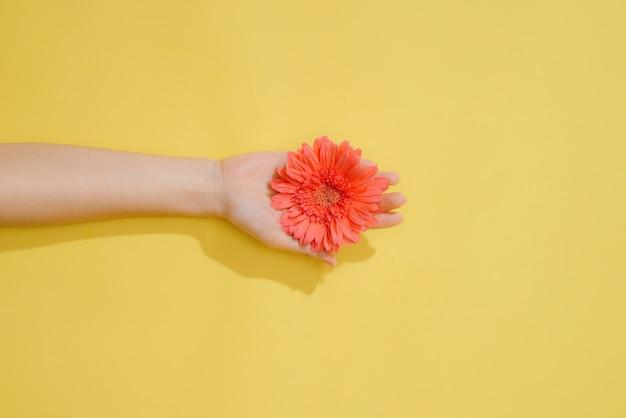 Concepto de amor o día de san valentín. fondo de primavera o verano