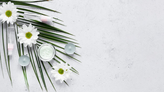 Concepto de cosmética natural