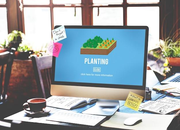 Concepto creciente del medio ambiente de cultivos de agricultura orgánica