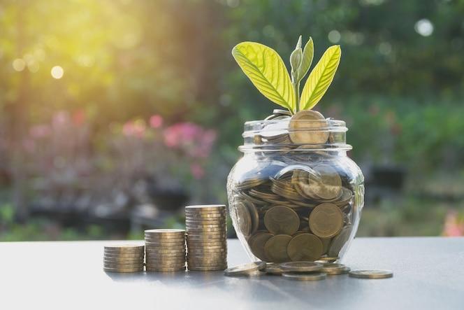 Concepto de ahorro de dinero con moneda de dinero en el frasco y planta verde para el negocio en crecimiento.