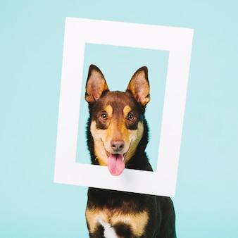 Concepto de marco con perro lindo