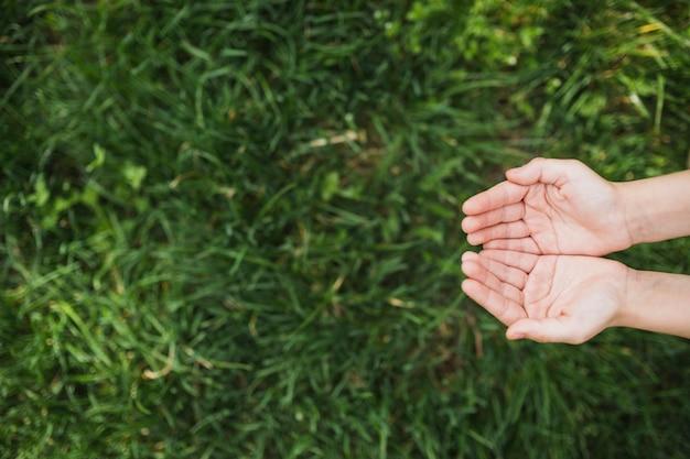 Concepto eco con manos encima de césped