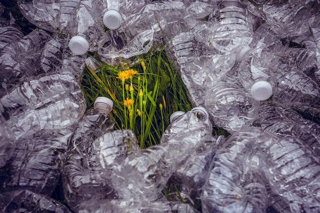 Concepto de ecología. botellas de plástico en la hierba verde. el problema de la ecología.