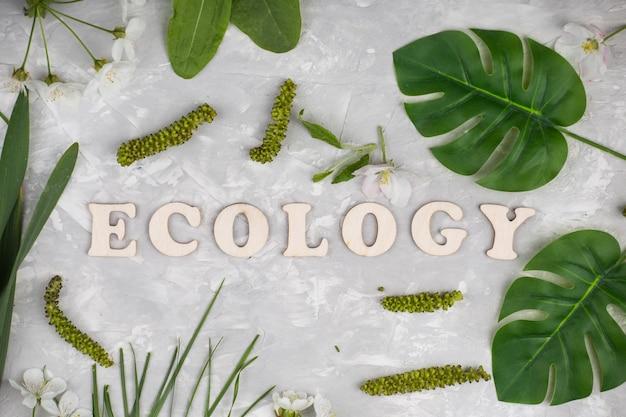 Concepto de ecología con hojas, hierba y flores.