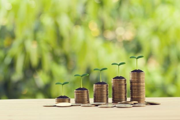 Concepto financiero: brote verde en filas de monedas crecientes en la mesa de madera. inversión en acciones para dividendos y ganancias de capital en un crecimiento a largo plazo