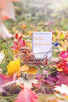 Concepto de halloween y acción de gracias, rebajas de otoño. temporada de otoño. hojas de arce, bayas y cuaderno en carro de supermercado. estilo de imagen de la temporada de otoño.