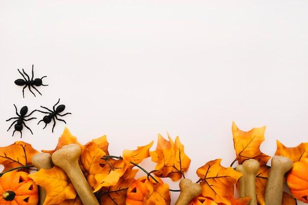 Concepto de halloween con espacio y hormigas
