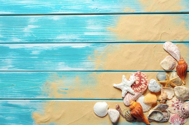 Concepto de horario de verano con conchas marinas.