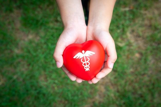 Concepto de icono médico en el corazón de las manos de la familia.