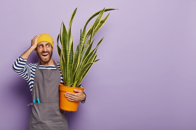 Concepto de jardinería doméstica. un florista masculino positivo enfrenta problemas por demasiada luz solar directa