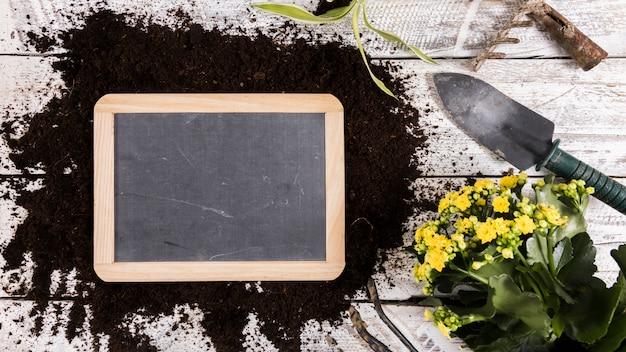 Concepto de jardinería flat lay