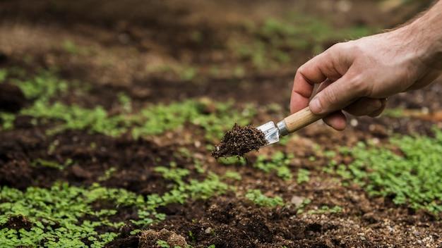 Concepto de jardinería con hombre plantando