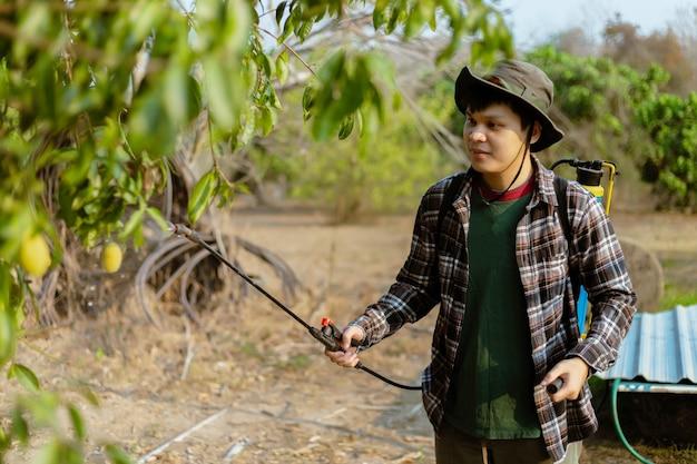 Concepto de jardinería un jardinero masculino que se deshace de los insectos rociando un insecticida orgánico en los árboles enteros.