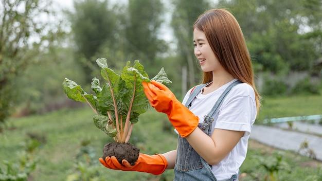 Concepto de jardinero femenino un guardián femenino sosteniendo la planta con cuidado y comprobando su apariencia exterior antes de enviarla a vender.