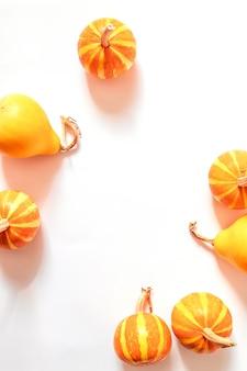 Concepto de moda de halloween. pequeña decoración de calabazas con coletas sobre un fondo blanco.