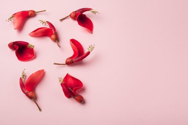Concepto moderno de flores con estilo elegante
