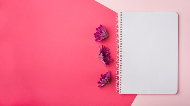 Concepto moderno de flores con libreta