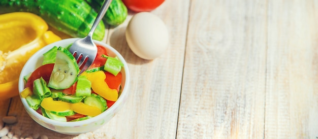 El concepto de nutrición adecuada