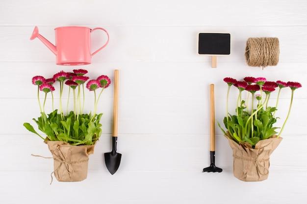Concepto de obras de spring garden. herramientas de jardinería, flores en macetas y regadera en mesa blanca. vista superior, endecha plana