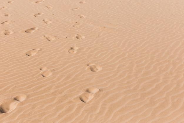 Concepto de playa con huellas de pies