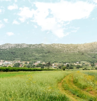 Concepto rural con pequeño pueblo