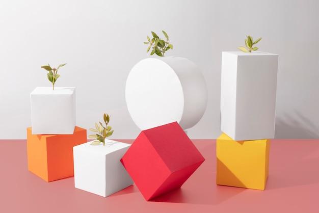 Concepto de sostenibilidad con formas geométricas y planta en crecimiento.