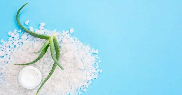 Concepto de spa de sal de baño minimalista y espacio de copia de aloe vera