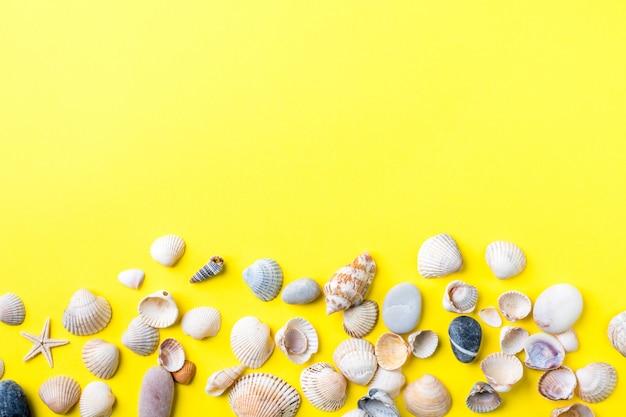 El concepto de vacaciones de verano. conchas de mar sobre fondo amarillo