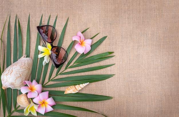 Concepto de verano endecha plana. hoja de palmera con conchas y vasos
