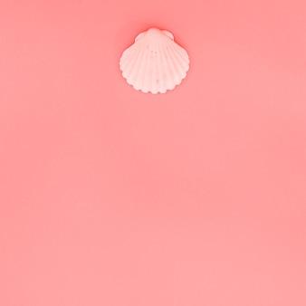 Concha de concha de peregrino rosada en el fondo coralino con el espacio de la copia para escribir el texto