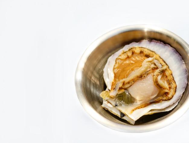 Concha de peregrino fresca cruda en el fondo blanco