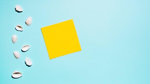 Conchas y adhesivo en blanco sobre superficie ligera.
