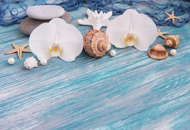 Conchas, estrellas de mar y orquídeas.
