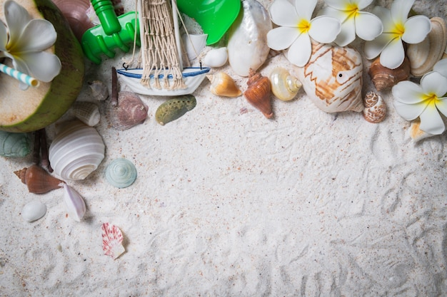Conchas y flores de plumeria sobre fondo de arena,