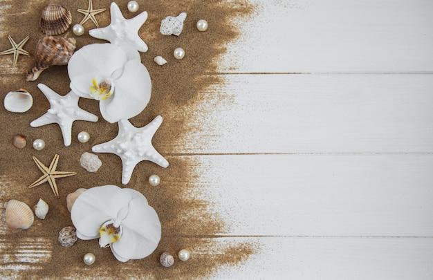 Conchas de mar con arena y flores de orquídeas