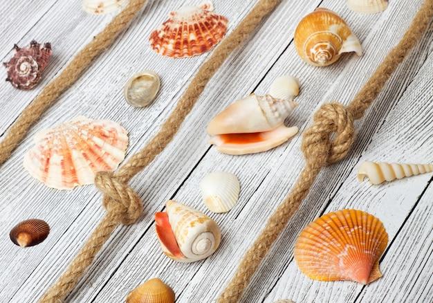 Conchas de mar y cuerda sobre una mesa de madera clara