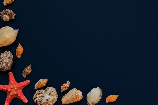 Conchas de mar y estrellas de mar sobre fondo azul marino con espacio de copia. vacaciones de verano y concepto de vacaciones