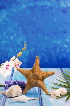Conchas de mar con flor de jacinto y orquídea blanca