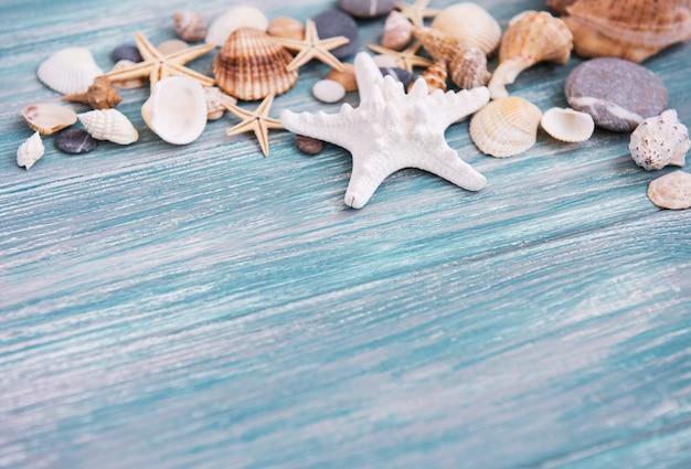 Conchas de mar en una mesa de madera