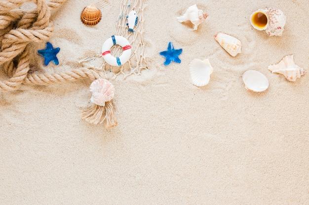 Conchas marinas con cuerda náutica sobre arena.