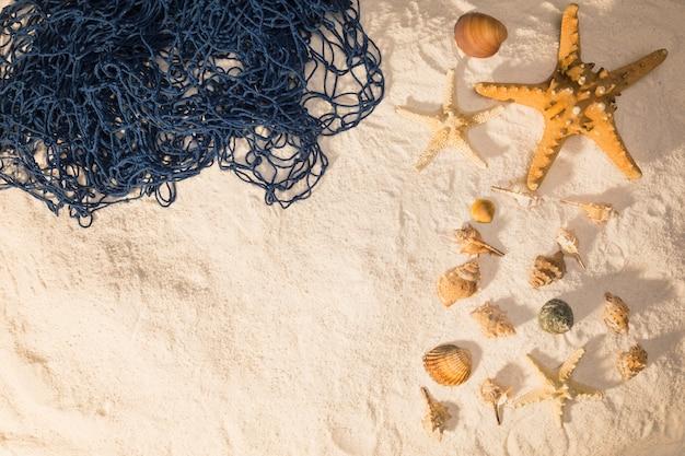 Conchas marinas y red sobre arena.